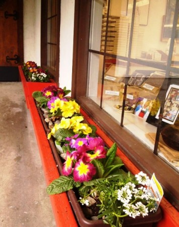 Photo of Window Flower Box